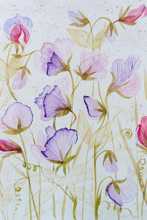 Floral meadow illustration-art print