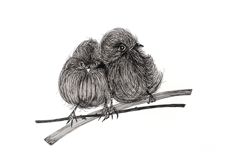 Us two- fluffy birdies-art print