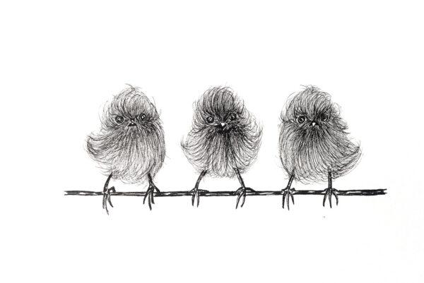 We three fluffy birds-art print