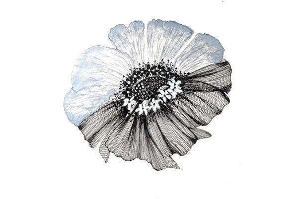 Monochrome grey and black floral art-art print