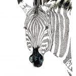 Zebra dot work art-art print