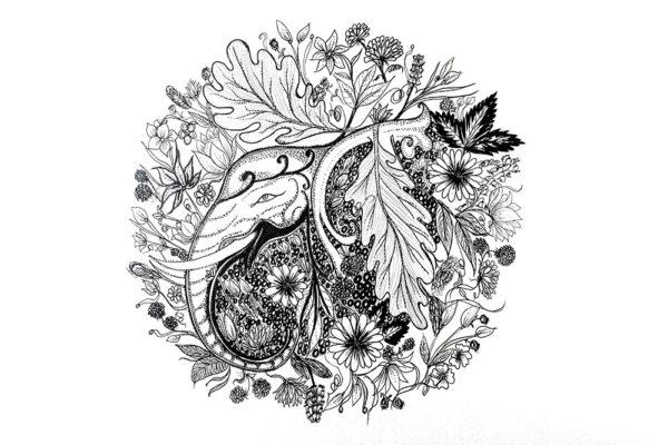 Enchanted forest an elephant art-art print