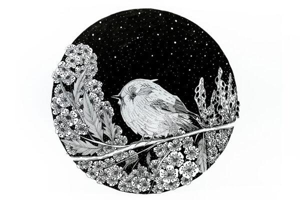 Night garden cherry flowers and a bird art-art print